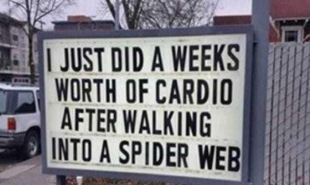 Spider Cardio Joke